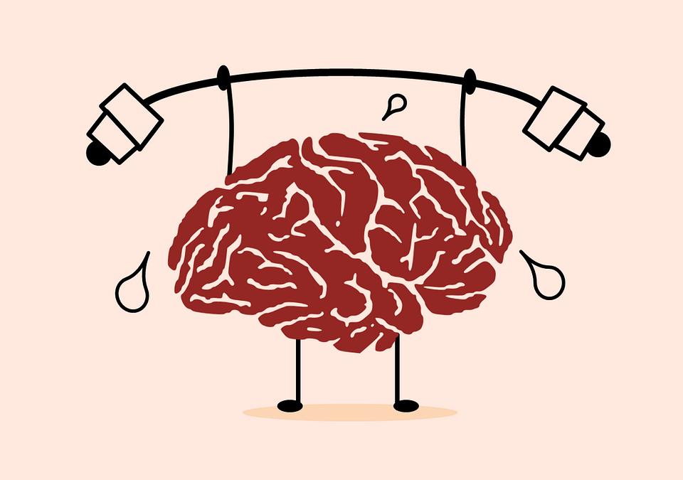 Per una disciplina consapevole: le sculacciate e il cervello